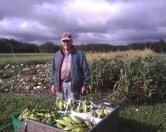Craig's Corn