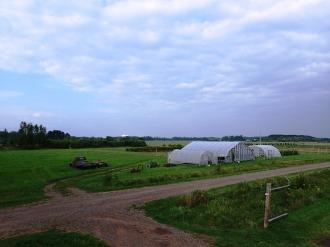Fields North