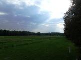 Fields West