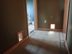 Cat doors into bedrooms!