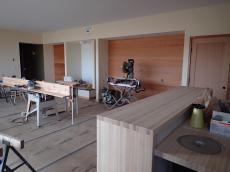 Paneling north wall living room