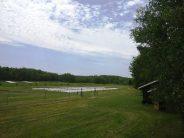 West fields