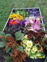 This week's flower harvest.